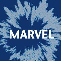 Marvel Omnibus
